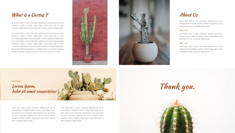 Cactus PPT Template