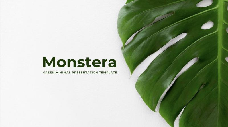 Monstera Powerpoint Template